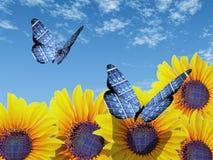 экологичность бабочки Стоковое Фото