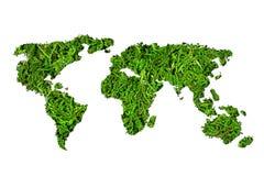 Экологичность концепции Карта мира, глобус от зеленых растений изолированных на белой предпосылке Стоковая Фотография RF