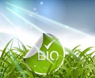 экологичность принципиальной схемы Стоковые Фотографии RF