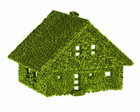 Экологичность природы зеленого дома Стоковые Изображения RF
