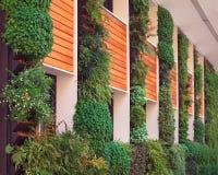 Экологическая архитектура Стоковое фото RF