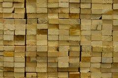 экологическая древесина Стоковые Изображения