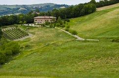 Экологический туризм - сельский дом, виноградники и поле Стоковые Фотографии RF