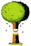 Экологичность, время, часы Стоковые Фото