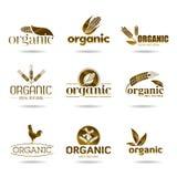 Экологичность, органический комплект значка. Органическ-значки иллюстрация вектора