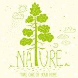 Экологичность природы дерева Стоковые Изображения