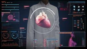 Экран женского доктора касающий цифровой, просматривая сердце сердечнососудистая людская система медицинская технология сток-видео