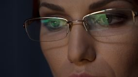 Экран отраженный в стеклах, женская деятельность на компьютере, концентрация ноутбука стоковая фотография rf