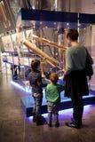 Экспозиция семьи наблюдая Стоковое Фото