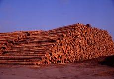 экспорт готовый Стоковая Фотография