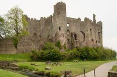 Экстерьер замка Laugharne, Carmarthenshire стоковые фотографии rf