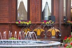 Экстерьер дома с фонтаном и славным ландшафтом Стоковая Фотография RF