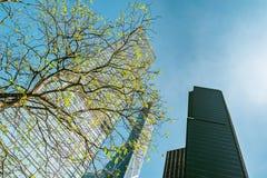 Экстерьер офисных зданий в Гонконге стоковое фото