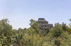 Экстерьер Museo Anahuacalli окруженный деревьями Стоковое Фото