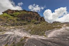 Эксцентричные старые утесы tepui Roraima плато - Венесуэла, Стоковые Изображения RF