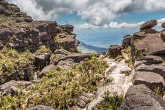Эксцентричные старые утесы tepui Roraima плато - Венесуэлы, Латинской Америки Стоковая Фотография RF