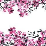 Элегантная безшовная картина с цветками Сакуры, элементами дизайна Стоковые Фото