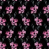 Элегантная безшовная картина с цветками Сакуры, элементами дизайна Стоковое Фото