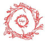 Элегантная и милая иллюстрация Тюльпаны Печатать для ткани и промышленных целей И красивая романтичная рамка  бесплатная иллюстрация