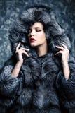Элегантность в одеждах зимы стоковое изображение rf