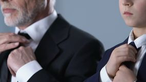 Элегантные мальчик и дед в костюмах регулируя связи, нося официально одежды видеоматериал