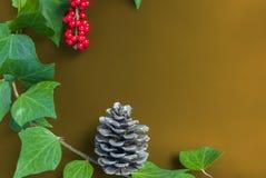 Элегантные ягода и конус рябины листьев на простой желтой предпосылке Стоковые Фото