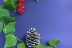 Элегантные ягода и конус рябины листьев на простой фиолетовой предпосылке Стоковое Изображение