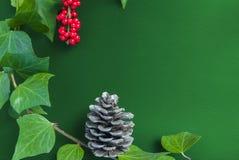 Элегантные ягода и конус рябины листьев на текстурированной зеленой предпосылке Стоковые Изображения RF
