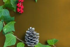 Элегантные ягода и конус рябины листьев на текстурированном желтом backgroun Стоковая Фотография