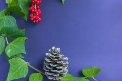 Элегантные ягода и конус рябины листьев на текстурированном фиолетовом backgroun Стоковое Фото