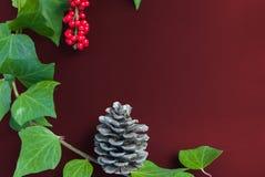 Элегантные ягода и конус рябины листьев на текстурированном backgroun вишни Стоковое Фото