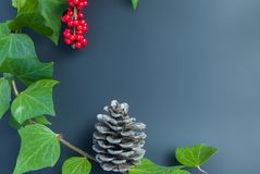 Элегантные ягода рябины листьев и предпосылка осени конуса Стоковое фото RF