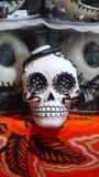 Элегантный череп Стоковые Изображения