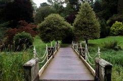Элегантный footbridge металла Стоковое Изображение RF