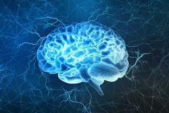 Электрическая деятельность человеческого мозга стоковые фотографии rf
