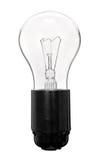 Электрическая лампочка в гнезде Стоковые Изображения