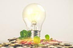 Электрическая лампочка на разбросанных русских монетках на серой предпосылке с листьями клевера Удача, день St. Patrick стоковые фото