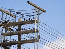 электрическая линия полюс Стоковая Фотография