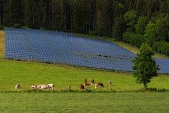 Электрическая система панели солнечных батарей лесом стоковые фотографии rf