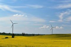 Электрическая станция энергии ветра в поле зацветая желтого рапса на предпосылке голубого неба и белых облаков стоковые фотографии rf