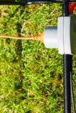 Электрическая штепсельная вилка шнура соединенная к электророзетке Стоковые Фото