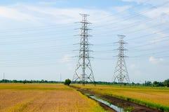 Электрические башни в поле риса Стоковые Фотографии RF