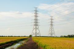 Электрические башни в поле риса Стоковые Изображения RF