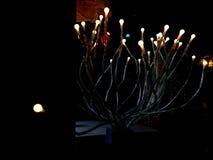 Электрические лампочки накаляя в темном, выборочном фокусе на светах с defocused взглядом Defocused предпосылка Освещать оформлен стоковое фото rf