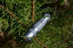 Электрофонарь на зеленом дереве Стоковое Фото