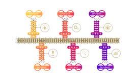 Элементы временной последовательности по дорожной карты метро поезда с диаграммой markpoint думают значки цели шестерни поиска r иллюстрация вектора