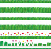 элементы засевают естественные тюльпаны травой Стоковое Изображение RF
