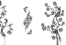 элементы конструкции птиц Стоковая Фотография RF
