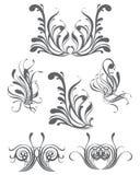 элементы конструкции флористические Стоковое Изображение