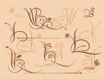 элементы конструкции флористические Стоковые Фотографии RF
